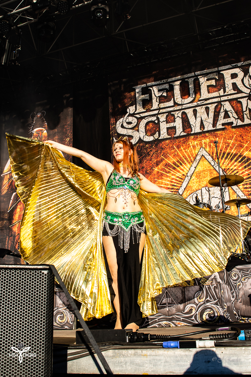 Feuerschwanz_Feuertanz Festival 2019_Vita Nigra-2